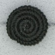Ref000059 Botón Redondo en color negro
