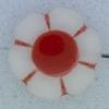 Ref000276 Botón Flor en colores rojo y  transparente